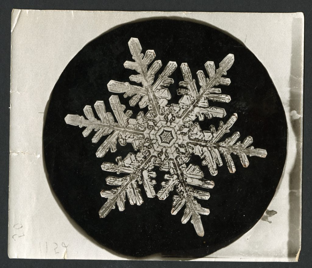 A snowflake photograph by Wilson A. Bentley, the first person to capture an individual snowflake on film. Photo courtesy of the Smithsonian Institution Archives.